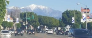 cars, trees, Mt. Baldy