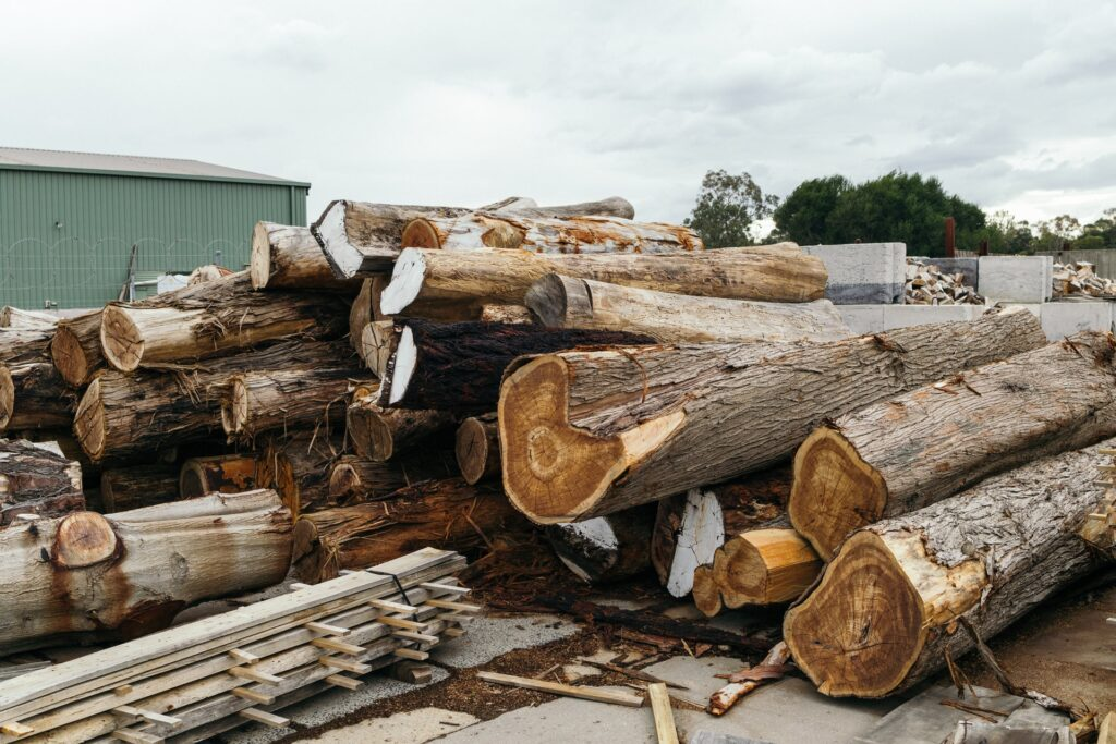 pile of raw logs